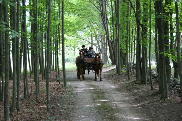 Let sounds of horse hooves and the creak of a carriage take you both to your destination